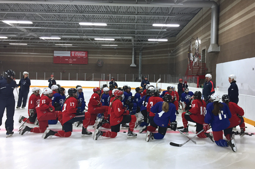 In addition to lessons learned during on-ice practices and dryland training sessions, the friendships made at the USA Hockey Player Development Camps last a lifetime.