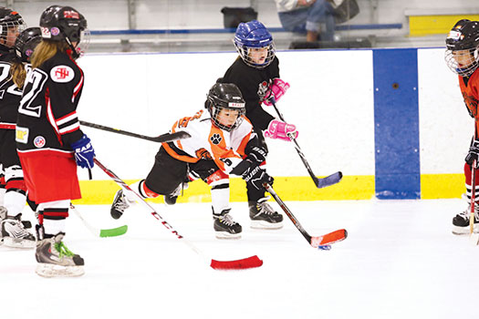 The Atlantic District's Mite Jamboree was not only a fun weekend of competition, it also allowed N.J. Mite teams to assess their skill levels so they can schedule more competitive games throughout the season.