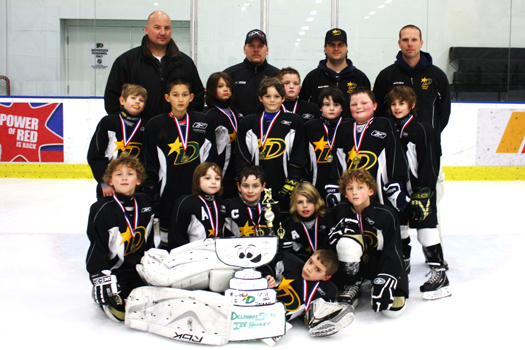 Flat Stanley Cup with the Delaware Stars Mites after winning 1st place in the Flyer's Skate Zone Presidents Day Tournament.  The Stars won the Championship game 1-0 with 12 seconds to go in the game!!: Photo submitted by Nicole Polisano